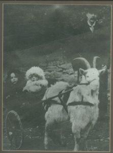 Jenkinson Family of Burleigh